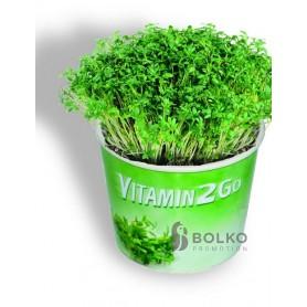 Vitaminbomba kis dobozkában