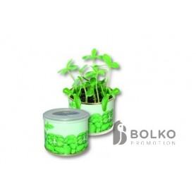 Növények konzervdobozban